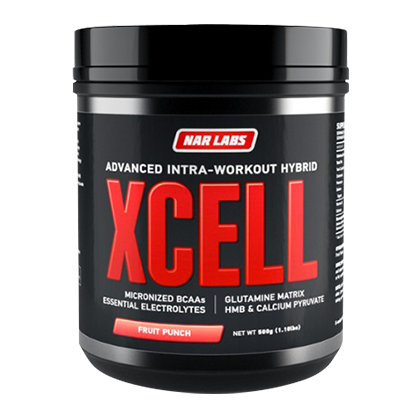 XCell 500