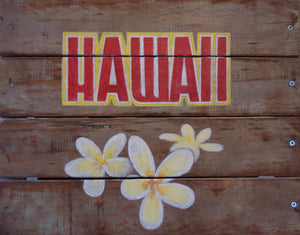 Hawaii by T. Andrew Dempsey Paint on Wood