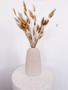 Real Dried Bunny Tail Grass - Natural