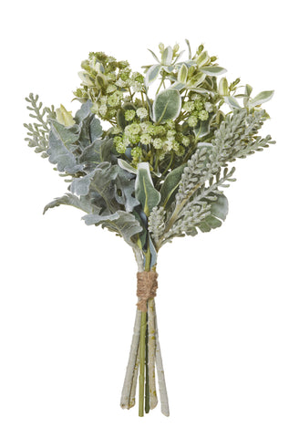 Dusty Miller Mixed Bundle