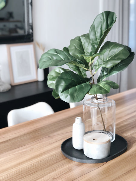 Fiddle Leaf Spray