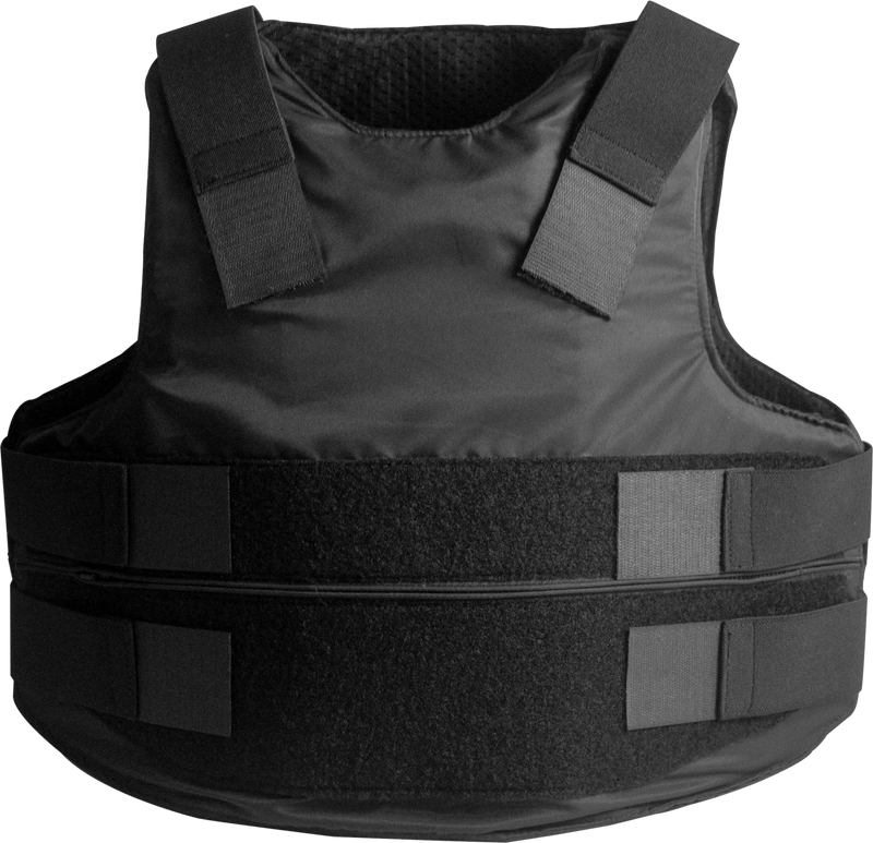 Concealable Carrier