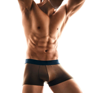 FANCIES Trunks Micromodal Trunks in Tan