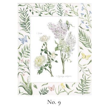 No. 9 Rosa and Syringa vulgaris (Rose and Lilac)