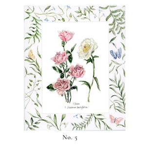 No. 5 and 6  Wallflower Series - Sets of Original Botanical Giclee Prints and Printed Mats