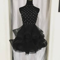Short Dress, Elegant Tulle Homecoming Dress    cg10370