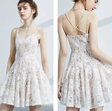 Cute V-neck lace short dress party dress Homecoming Dress   cg10817