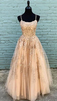 Fabulous Tulle A Line Spaghetti Straps Prom Dresses with Lace Appliques   cg11260