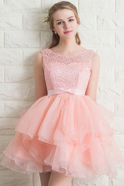 Elegant Lace A-Line Short Homecoming Dress cg1229