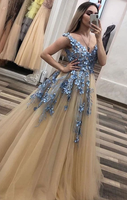 Champagne v neck tulle lace long prom dress champagne evening dress cg5013