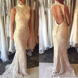 Lace Mermaid Prom Dress, Open Back Prom Dress,Sleeveless Evening Gown,Long Evening Dresses,Formal Dress  cg6550