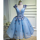 Sky Blue Butterfly Short Homecoming Dress Party Dresses cg77