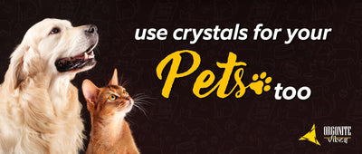 USE CRYSTALS FOR YOUR PETS TOO