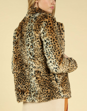 Load image into Gallery viewer, In The Wild Leopard Jacket Short - John and Suki