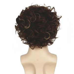 John | Curly Short Synthetic Wig | Brown with Blonde highlights - Wig Experts