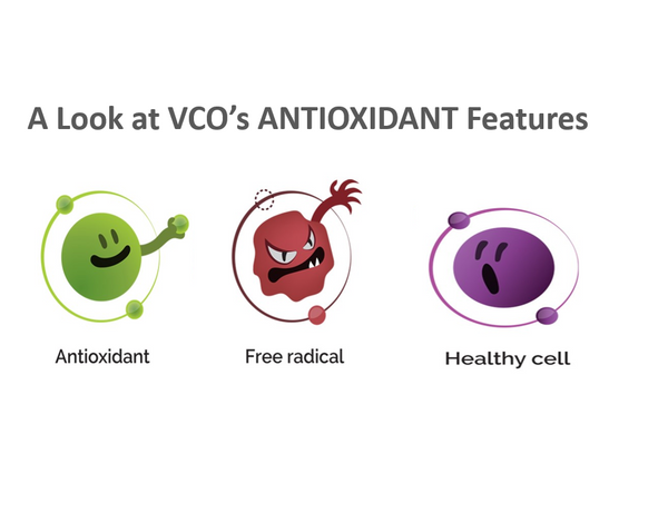 A look at Antioxidants in VCO
