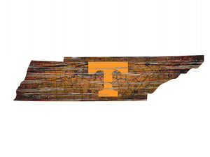 NCAA College Team Logo State Design Wood Sign