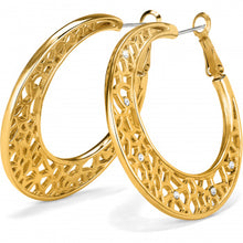 Load image into Gallery viewer, Fiji Sparkle Hoop Earrings Gold