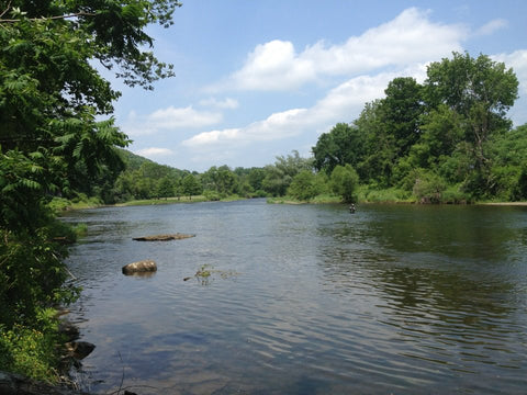 Upper West Branch of the Delaware River - Fly Fishing