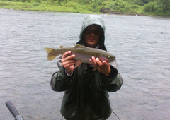 Catskills - Fly Fishing - Rainbow Trout