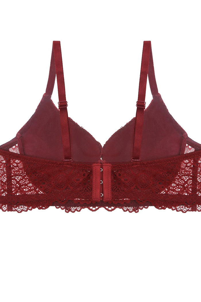 Push Up Velvet And Lace Bra