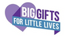Big Gifts for Little Lives Charity Alpine Necklace