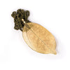Gold-Dipped Leaf Necklace