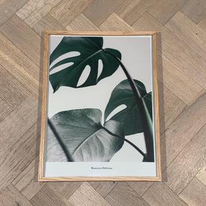 Monstera II (30x40)