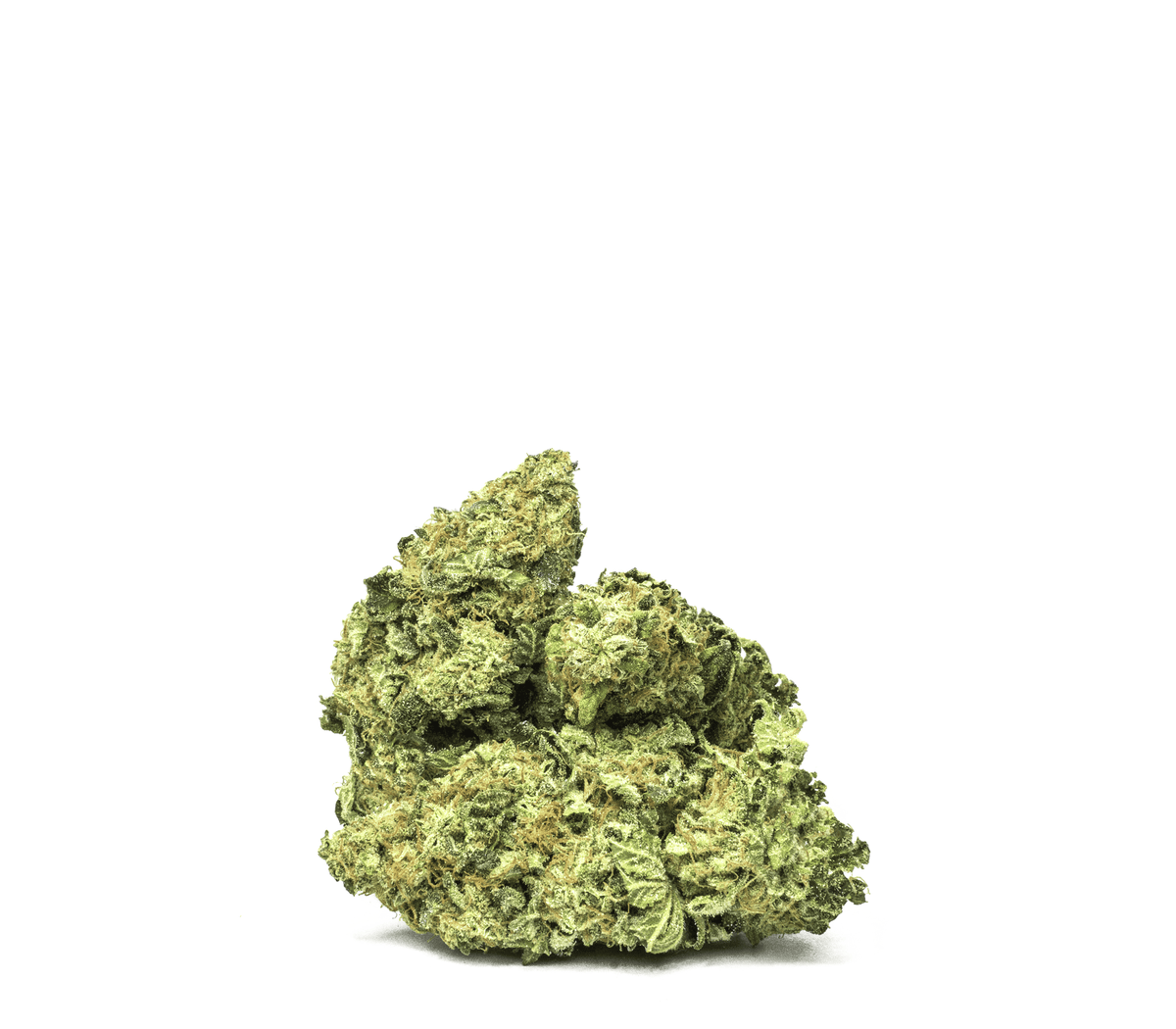 This hybrid of the OG Kush and Durban Poison strains boasts full body relaxation, while at the same time offering a powerful cerebral sensation.The euphoric sensation of the Girl Scout Cookies can leave you happy and relaxed. THC 20-24% CBD <1%. Sold by Prairie Records. Find it in Saskatchewan.