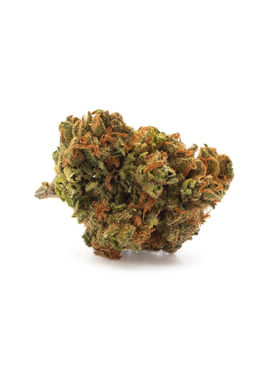 When life gives you lemons, try Lemon Skunk. A cross of two Skunk strains chosen for their lemon characteristics, this mid-range THC hybrid brings together the scent of lemons and black pepper with hints of citrus. THC 13-22% CBD 0-1%. In Saskatchewan sold by Prairie Records. Also in Warman.