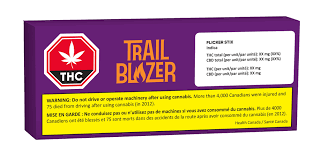 Trailblazer - Flicker Pre-rolls