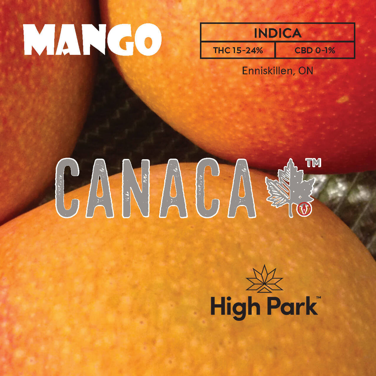 A classic strain that originated in the 60's, most recently crossed with KC33. Canaca Mango's flavour comes from a high terpene content of myrcene, also found in mangos. THC 15-20% CBD 0-1%