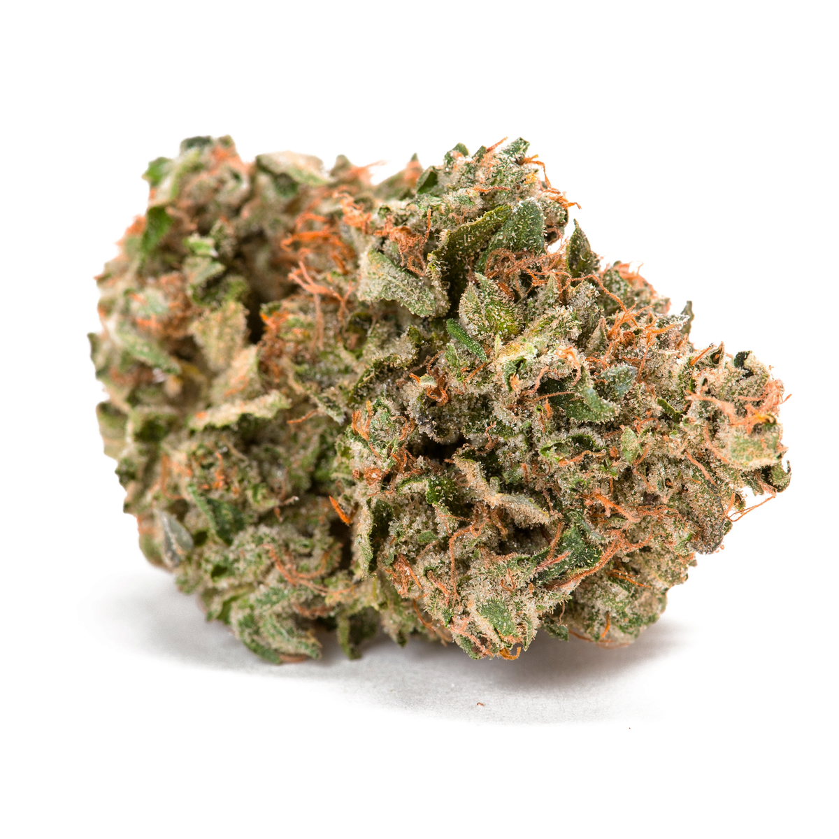 Descendant of Sensi Star and Rockbud, Grail Rockstar is a go-to for heavy indica lovers. Aromas of spice and grape provide a unique bouquet that can take you beyond the couch and kick off your night. THC 21-24% CBD 0-1%. Sold by Prairie Records. Find it in Warman and Saskatchewan.