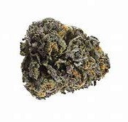 48 North - Grand Daddy Purple