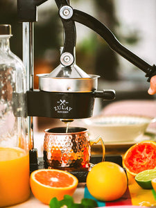 Professional Heavy Duty Citrus Juicer - Manual Citrus Press and Orange Squeezer
