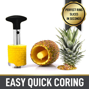 Simple Craft Pineapple Corer and Slicer Tool