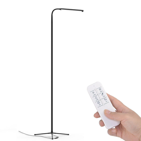 Sleek Floor Lamp