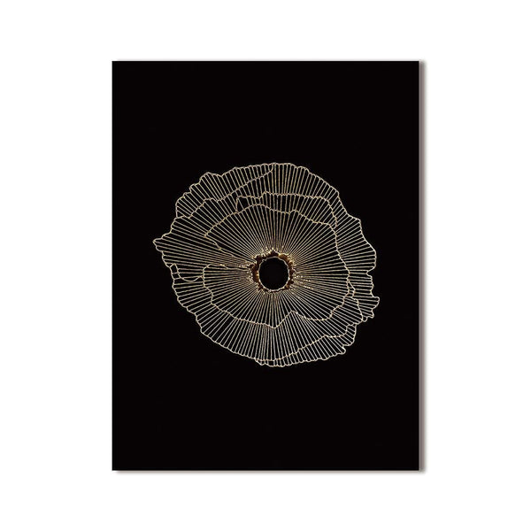 Dark Crater Stretched Canvas