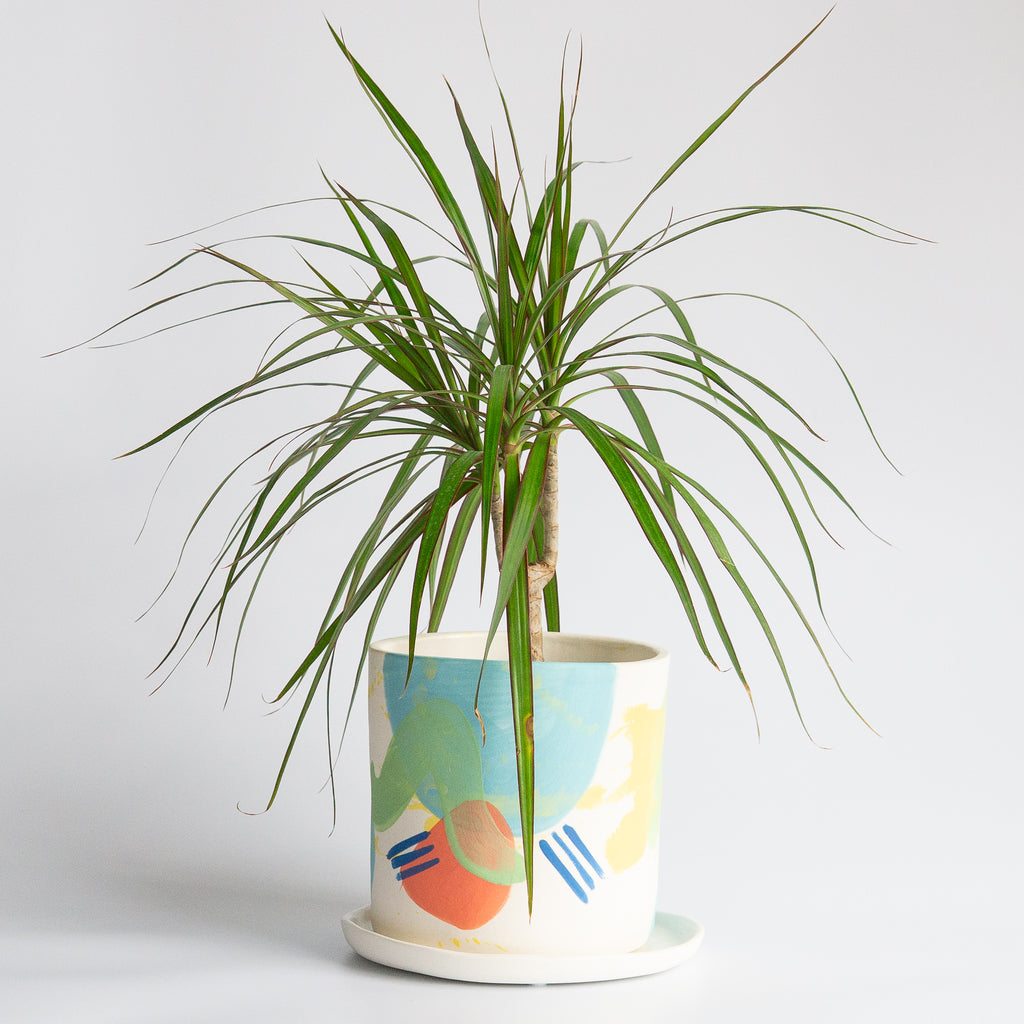 Technicolor Dino: Medium Porcelain Planter