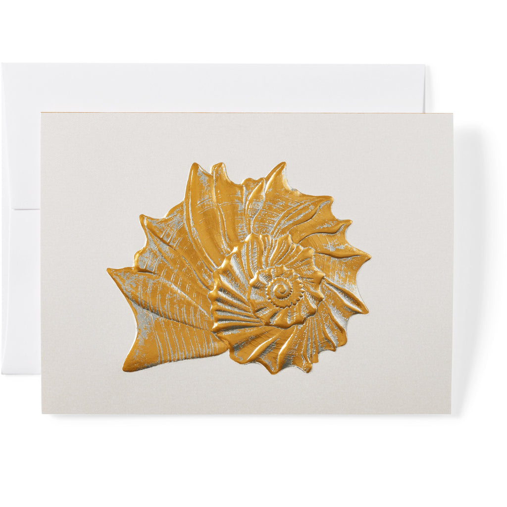 Whelk Note Cards, Set of 8