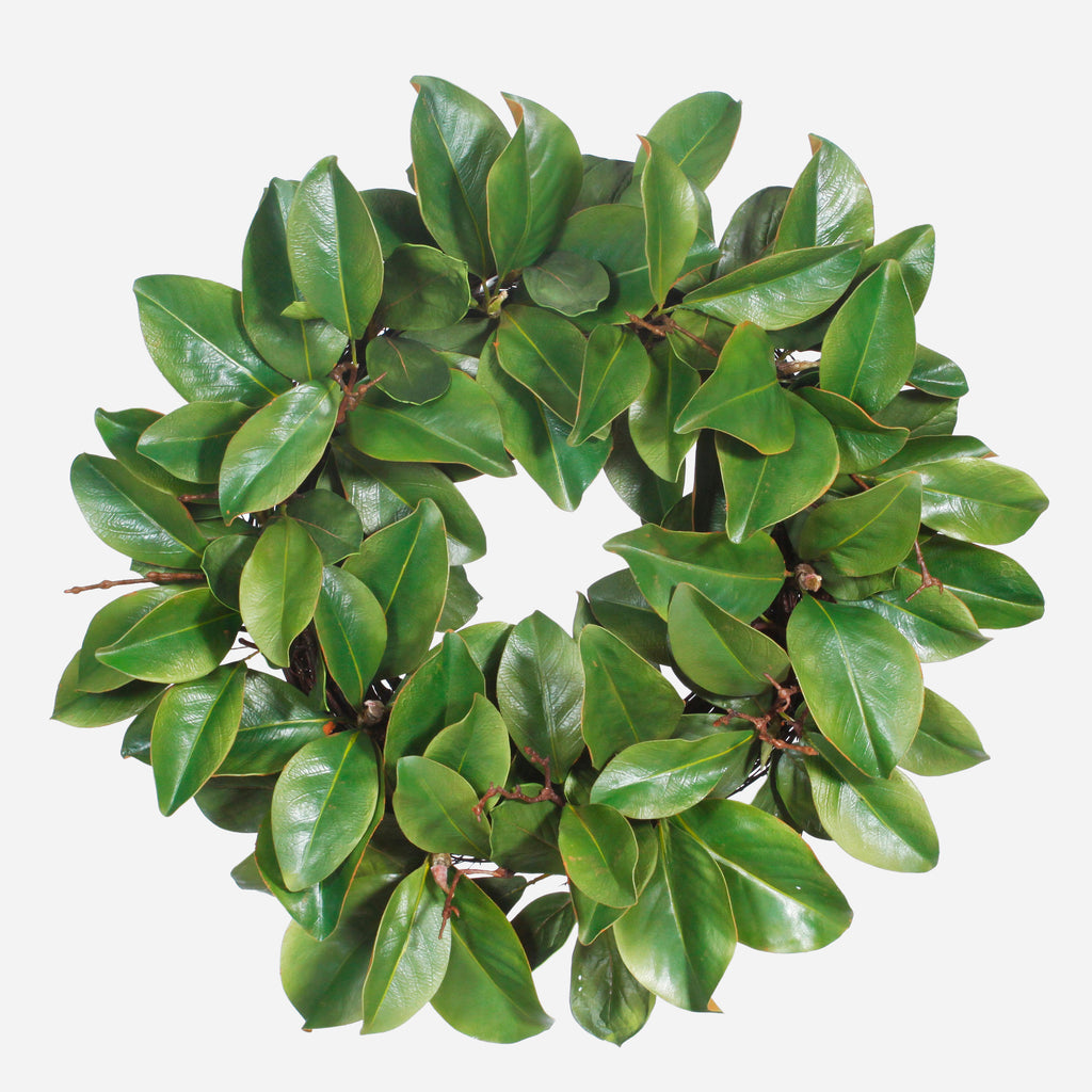 Magnolia Leaf Twig Wreath, 24