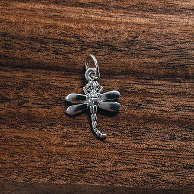 Silver Dragonfly curved tail charm