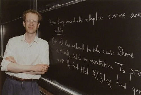 andrew wiles on top 10 list of most intelligent people in the world