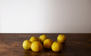 The Power of Sour: Yuzu for a New You - BotanicLab