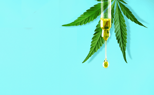 The ultimate guide to CBD oil - BotanicLab