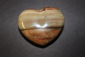 Petrified Wood 50mm Heart