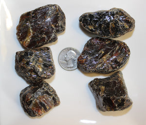 Rough Dark Amber Specimen (Prices Vary)