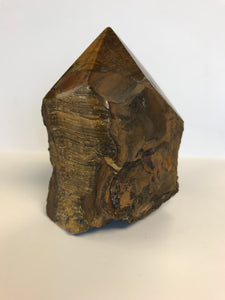 Tiger Eye Rough with Polished Point