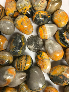 Tumbled Bumble Bee Jasper