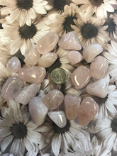 Load image into Gallery viewer, Tumbled Rose Quartz